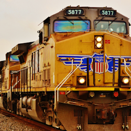 UP 5877, 7054  7670 by Jim Suter - Transportation Trains (  )