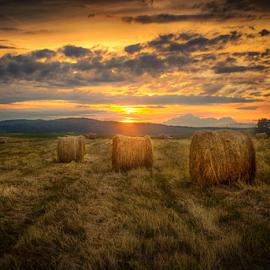 Keep rollin' by Dobre Cezar - Landscapes Prairies, Meadows & Fields