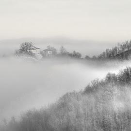 by Luna Sol - Black & White Landscapes