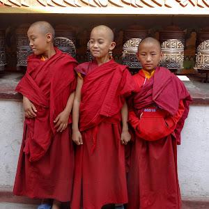 vaikai vienuoliai (1 of 1).jpg