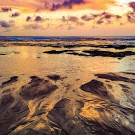 Canggu beach,Bali by Amrita Bhattacharyya - Landscapes Beaches