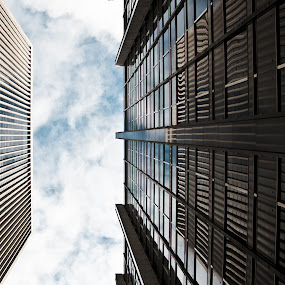 up to the sky by Paolo Tangari - Buildings & Architecture Other Exteriors ( sky, buildings, san francisco )
