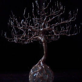 by Brian Boyer - Novices Only Objects & Still Life ( copper wire tree, trees, tree art, wire art, sculpted wire tree )