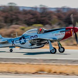 P-51 Mustang at Take-Off by Johan Jooste Snr - Transportation Airplanes ( aeroplane, aircraft, p-51 mustang, take-off, namibia, air show, warplane )