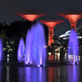 by Koh Chip Whye - City,  Street & Park  City Parks (  )