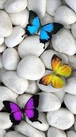 Screenshot of Butterfly Live Wallpaper