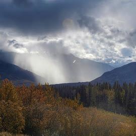 Sun Beaming Down by Patricia Phillips - Landscapes Travel ( alaska highways richardson, sunbeams. autumn )