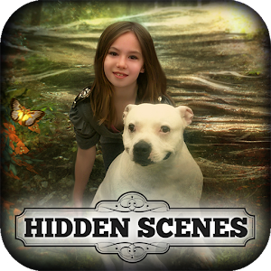 Hidden Scenes Magic Companions