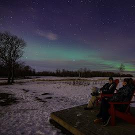 Watching the universe  by Michael Hoek - Landscapes Prairies, Meadows & Fields ( national park, night photography, canada, stars, aurora, prairie, elk island national park )