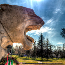 Anger by Péter Cseke - Buildings & Architecture Statues & Monuments ( hungary, lion, budapest, statue, sky, blue, cemetery, trees, monument, travel, kerepesi, head, spring )