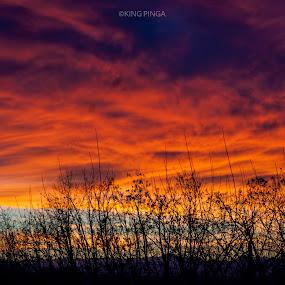 The Golden Hour I by Roi Piñga - Landscapes Sunsets & Sunrises ( nature, nikon d40, sunset, landsacpe, golden hour )