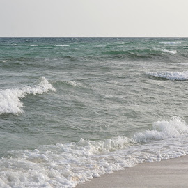Waves by Kayla House - Landscapes Beaches ( water, sand, waves, calming, ocean, beach, sandy, relaxing, sun, sandy beaches, beaches, vacation, great, sunny, florida, summer )