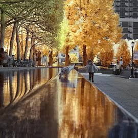 Battery Park City, NY by Helen Bradshaw - City,  Street & Park  City Parks ( north cove, nyc, new york, battery park city, south cove )