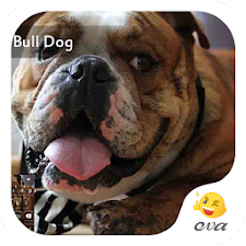 Honey Bull Dog Emoji Keyboard