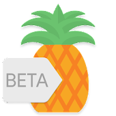 App Pineapple - Icon Pack version 2015 APK