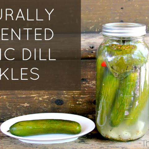 Naturally Fermented Garlic Dill Pickles
