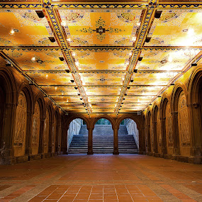 Ornate by Josh Balduf - Buildings & Architecture Other Interior ( ornate, park, arch, yellow, city, new, blue, arches, york, gold, underground, central, tunnel )