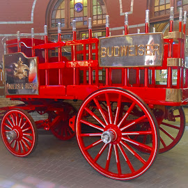 by Lorna Littrell - Transportation Other ( wagon, red wagon, antique wagon )