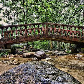 jungle bridge by Nunsyinrayakaf Ainzalmimya - Buildings & Architecture Bridges & Suspended Structures