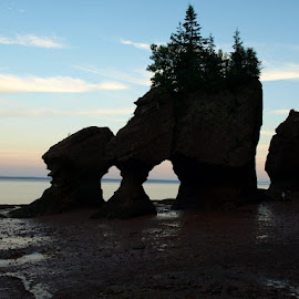 Hopewell Rocks by Sue Magoon - Landscapes Beaches ( hopewell rocks,  )