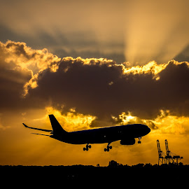 Sunrise Landing by Hilton Luke - Transportation Airplanes ( plane, transport, silhouette, airplane, brisbane, transportation, sunrise, morning, sun rays )
