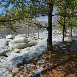Ice Out  by Gilman Michaud - Landscapes Waterscapes