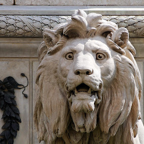 The Lion by Joatan Berbel - Artistic Objects Other Objects ( lion, sculpture, naples, rome, carving )