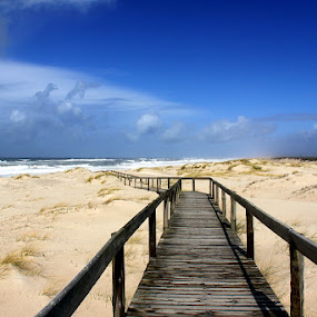 Blue winter by Gil Reis - Landscapes Beaches ( water, sands, beaches, nature, sea, portugal )