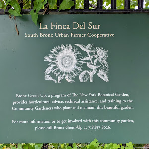 La Finca Del Sur South Bronx Urban Farmer Cooperative Bronx Green-Up, a program of The New York Botanical Garden, provides horticultural advice, technical assistance, and training to the Community ...