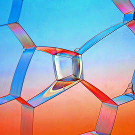 Transparency by Michael Schwartz - Abstract Macro