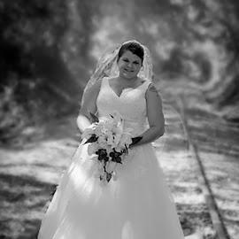 by Stephanie Shuman - Wedding Bride (  )