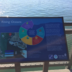 Rising Oceans