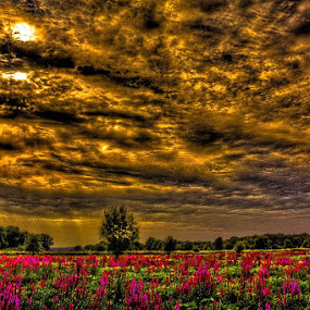 Meinerswijk Arnhem 01/08/2012 by Raymon Brugman - Landscapes Weather ( meinerswijk arnhem 01/08/2012 netherlands clouds sun down shattered scattered )