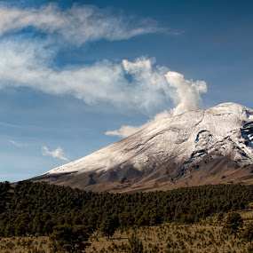 Popo too close by Cristobal Garciaferro Rubio - Landscapes Forests ( cholula, popo, mexico, puebla, popocatepetl )