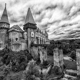 Corvin castele by Panait Sorin - Buildings & Architecture Statues & Monuments ( canon, castele, corvin, architecture, alb negru )