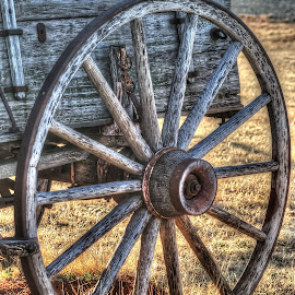 Country Wagon Wheel  by D.M. Russ - Artistic Objects Other Objects ( wheel, wagon wheel, wagon, d.m. russ )