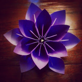 Origami Flower by Riley Poeschl - Novices Only Objects & Still Life ( purple, lavendar, origami, lavender, flower )