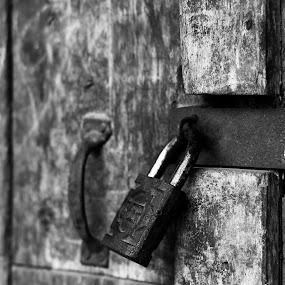 the key by Bhako N Bhako - Abstract Fine Art