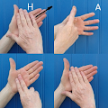 British Sign Language APK for Bluestacks