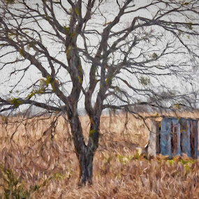 Last Leaves of Fall by Allen Crenshaw - Painting All Painting ( winter, fall, art, leaves, painting )