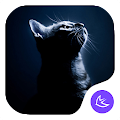 QUIET CAT-APUS Launcher theme APK for Bluestacks