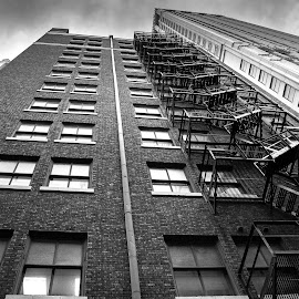 No Diving Allowed by Rob Heber - Buildings & Architecture Architectural Detail ( railing, ladder, platform, old, building, fire escape, vintage, brick, windows, architecture, pipe, concrete, city, urban, skyscraper, offices, mortar, drain pipe, antique, classic )