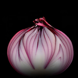Purple Onion by Christy Stanford - Food & Drink Fruits & Vegetables ( purple, food, gardening, vegetable, onion )