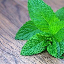 Mint leaves. by Dipali S - Food & Drink Fruits & Vegetables ( salad, raw, condiment, oriental, bright, spice, plants, farmland, leaf, botanical, spring, crop, chinese, asian, farm, nature, fresh, foliage, cultivation, closeup, lush, bed, green, flavor, mint, agriculture, peppermint, morning, field, organic, herb, food, outdoor, grow, background, gardening, healthy, herbal, vegetable, garden )