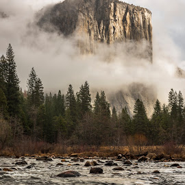 El Capitan by Jeff Fahrenbruch - Landscapes Mountains & Hills ( national park, california, el capitan, valley view, yosemite national park, merced river )