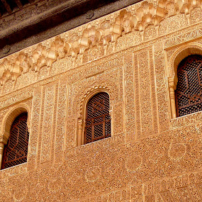 Alhambra Palace  by Dhannya Jacob - Buildings & Architecture Architectural Detail ( islamic architecture, andalusia, calligraphy, monument, architecture, palace, spain )