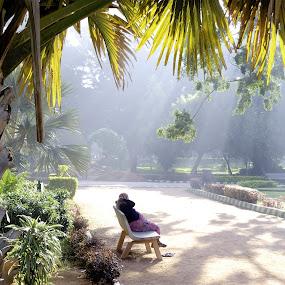 by Bharathkumar Hegde - City,  Street & Park  Street Scenes