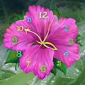 Free Flower Clock Live Wallpaper APK for Windows 8