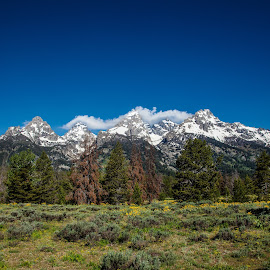 Tetons by Deb Tomoi - Landscapes Mountains & Hills
