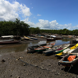 Barcos do Iguape by Aldemir Vieira - Transportation Boats ( iguape, ipitanga foto clube, santiago, recôncavo, acupe, ifc )